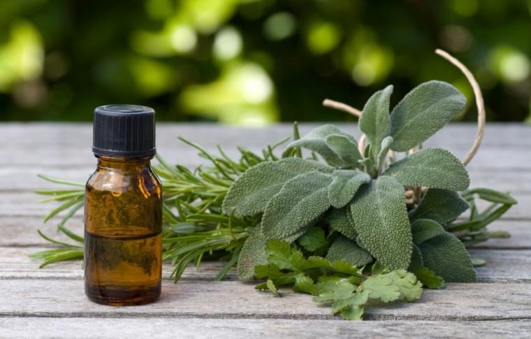 קנדידה – טיפול ברפואה סינית וצמחי מרפא